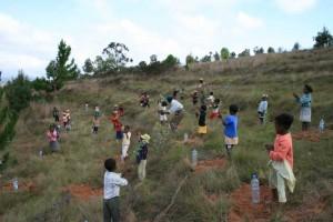 Les élèves du CP vont planter leur arbre