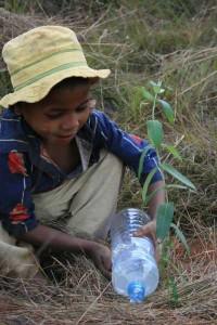 Il arrose son arbre avec l'eau qu'il a apporté du village