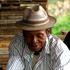 L'activité à Madagascar